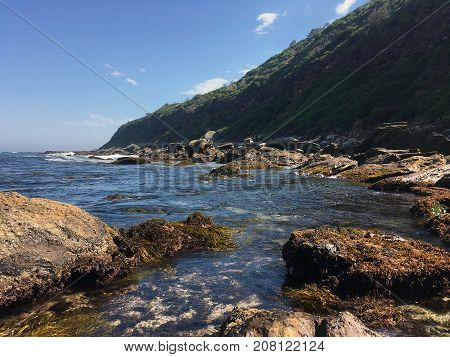 Wild and secluded natural rocky seascape and green seaweed