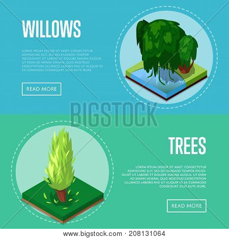 Decorative plants for park design isometric posters. Poplar and willow tree in green grass 3d elements. Public parkland zone landscape, outdoor natural recreation vector illustration.