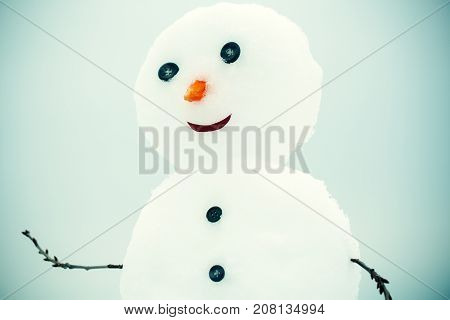 Snowman With Face Of Carrot And Button.