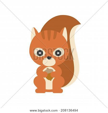 cute squirrel holding acorn, flat design character