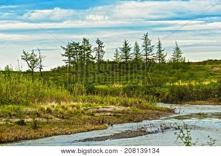 The river bank of the small small river with a rapid current. Landscape