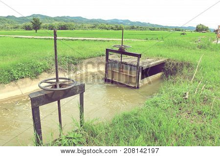 small floodgate of irrigation canal for rice field in Thailand.