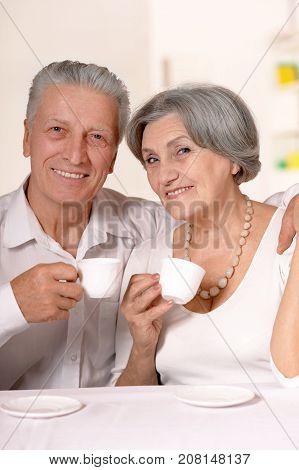 Portrait of happy senior couple drinking tea