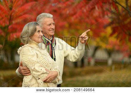 happy Senior couple posing in autumn park