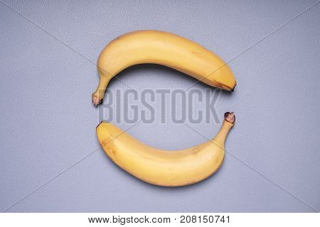 topview of two bananas forming circle shape on blue background