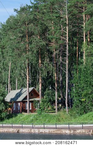 Wooden house is standing in a pine grove on the river bank. Summer day.