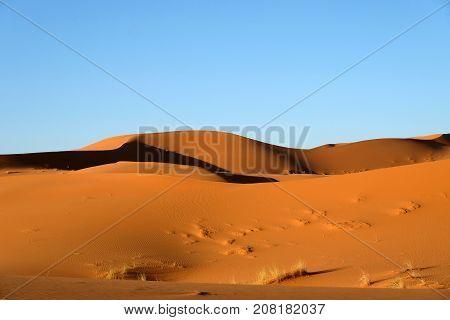 Sand dunes landscape in Sahara desert Morocco