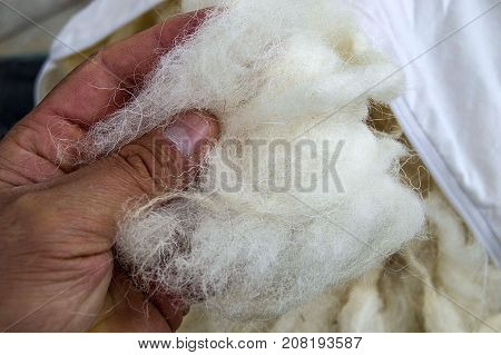 sheep wool, wool pictures, make quilts and pillows with natural wool,