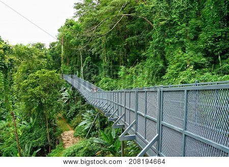 Chiang Mai Thailand August 24 2017: Tree Canopy Walkway The Iron Bridge in the tropical forest at Queen Sirikit Botanic Garden Chiang Mai Thailand