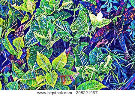 Tropical leaf top view. Cartoon green leaf. Exotic garden digital illustration. Natural leaf ornament. Potted houseplant. Vibrant floral decor. Exotic foliage plant. Tropical banner background poster