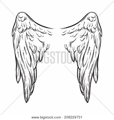 Angel Wings Isolated On White Background Hand Drawn Vector Illustration. Black Work, Flash Tattoo Or
