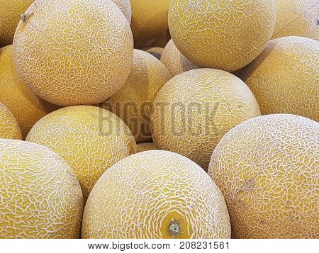 Honeydew melon in a pile at a shop