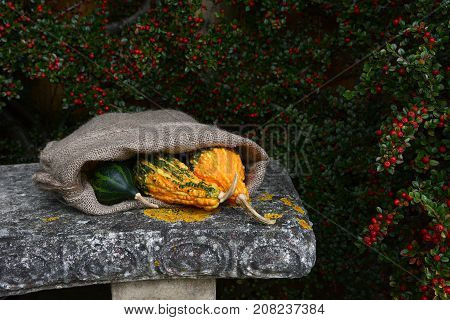 Three Brightly Coloured Gourds In Sack On A Stone Bench