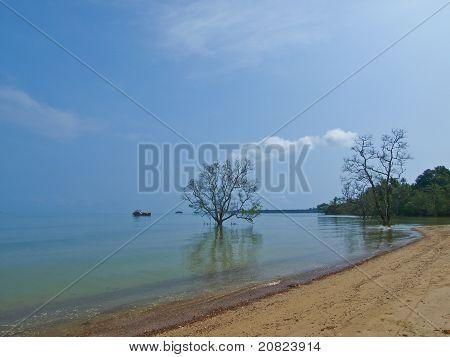 Peace Beach