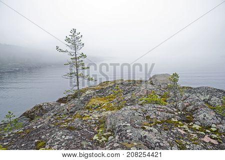 Fog Over The Ladoga Lake. Karelia, Russia.