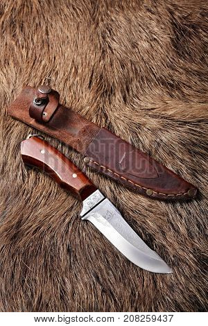 Hunting Knife With Leather Sheath On A Wild Boar Furs Background.closeup
