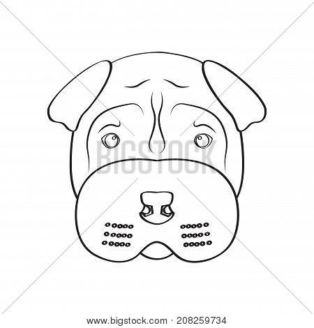 Isolated shar pei avatar on a white background, Dog breed vector illustration