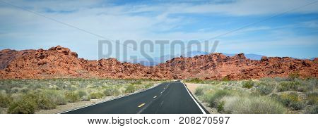 Long sinuous Road in the middle of the Valley of Fire