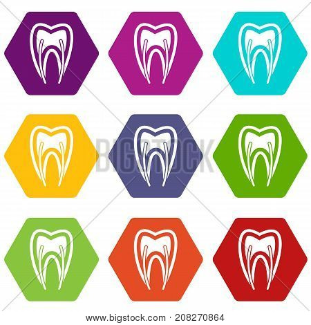 Tooth cross section icon set many color hexahedron isolated on white vector illustration