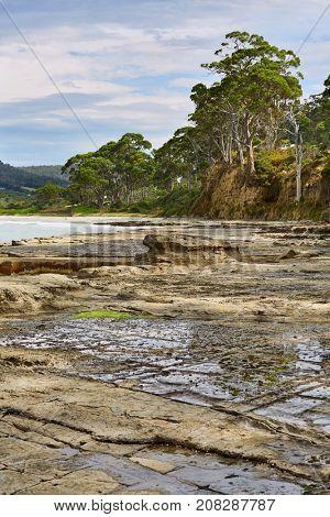 Landscape in Tasmania, Tessellated Pavement