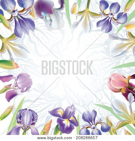 Greeting card with irises flowers. Raster Version