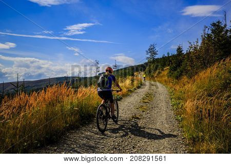 Cycling, mountain biking woman on cycle trail in autumn forest. Mountain biking in autumn landscape forest. Woman cycling MTB flow uphill trail.
