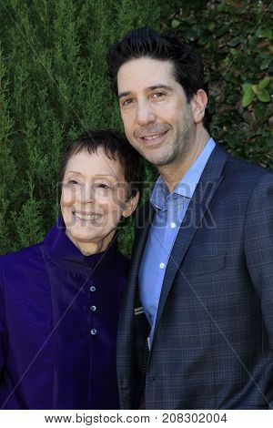 LOS ANGELES - OCT 8:  Gail Abarbanel, David Schwrimmer at the The Rape Foundation's Annual Brunch at the Private Residence on October 8, 2017 in Beverly Hills, CA