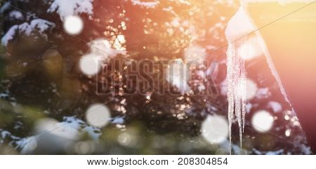 Low angle view of icicle on roof during winter with bokeh in foreground