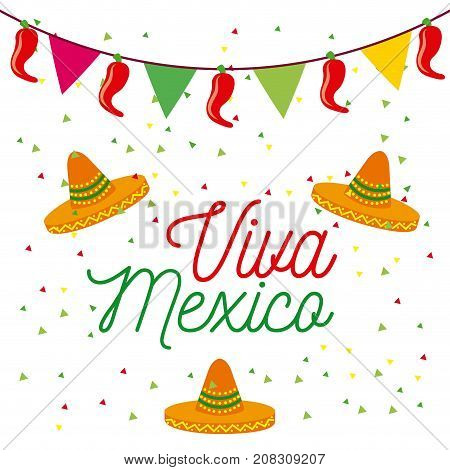 viva mexico poster colored hats and pennant decoration celebration vector illustration