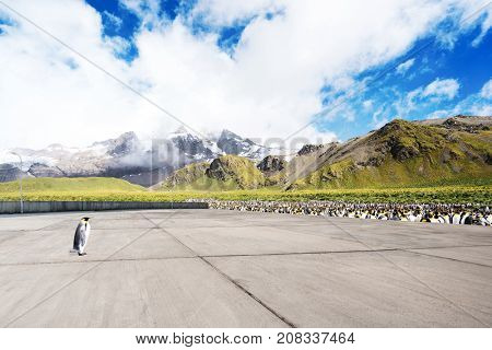 empty marble floor and beautiful snow mountains in blue cloud sky