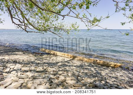 at a stony rocky beach on Lake Ontario near Oakville with peebles and a tree log in the blue water and a tree casting some shade on this sunny day