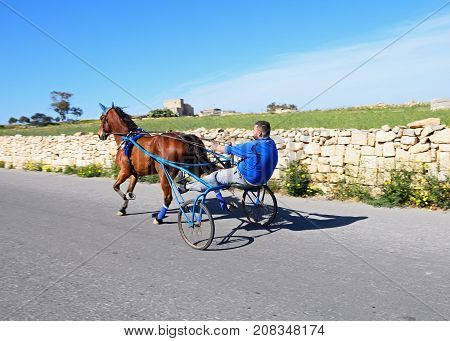 DINGLI, MALTA - APRIL 1, 2017 - Man travelling in a pony and trap along a country road Dingli Malta Europe, April 1, 2017.