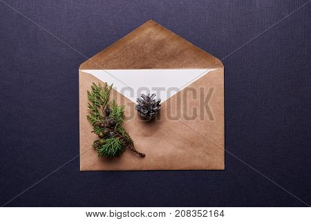 decoration for christmas. browm envelope, evergreen twig  and pine cone painted in silver over blue background