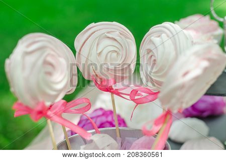 Lollipops Spiral Forms candy on pink background. Funny concept. Meringue candy on wooden stick. Festive sweet table for children. Candy Bar.