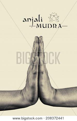 Anjali mudra. Yogic hand gesture. Isolated on toned background black and white.