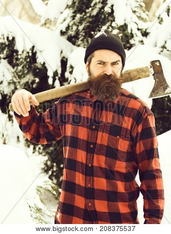 Handsome Man Or Lumberjack