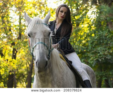Young brunette beauty jokey girl having fun with horse in the park