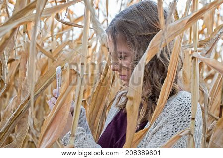 Caucasian teenage girl looking at cell phone in autumn cornfield