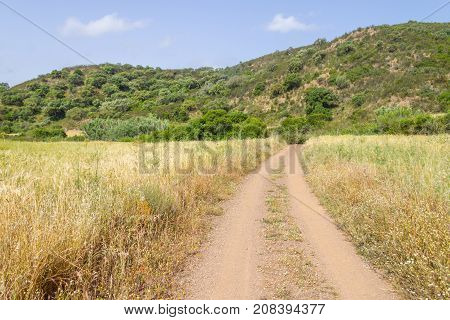 Road In Ajezur With Mountain And Vegetation