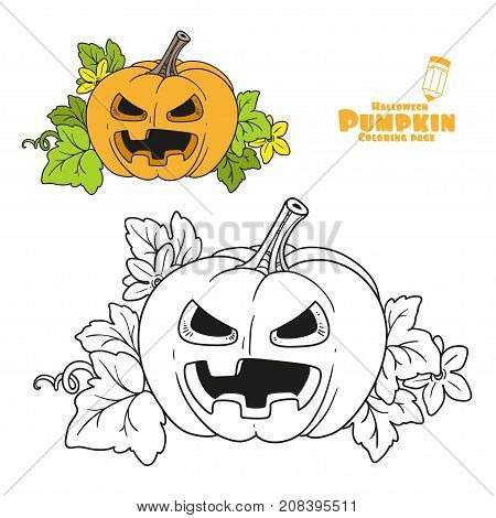 Lantern From Pumpkin With The Cut Out Of A Terrible Grin And Leaves Color And Outlined For Coloring