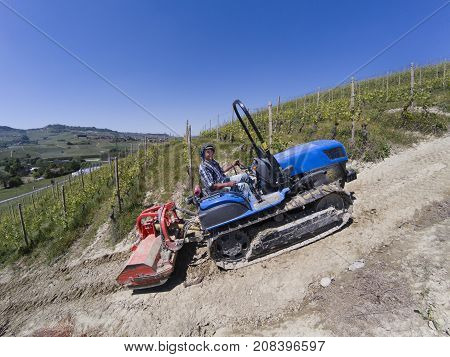 Driver On Crawler Tractor, Climbs Steeply Up Into The Vineyards