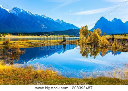 Sunny autumn day in the Rocky Mountains of Canada. The water of fantastic Abraham lake reflects light clouds and trees. The concept of ecological and active tourism