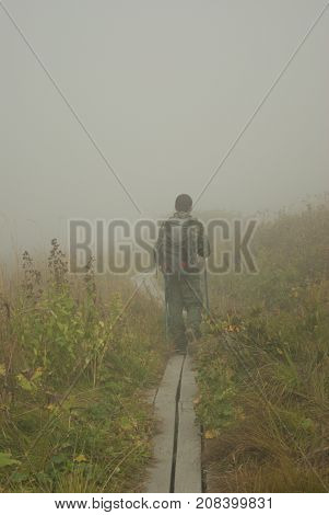 Backpacker with poles for Nordic walking fades into the fog along the boardwalk paved in a swampy autumnal meadow
