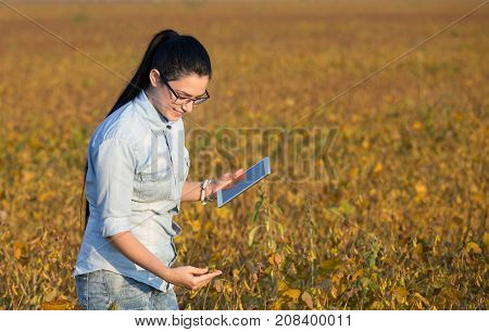 Farmer Girl With Tablet In Soybean Field