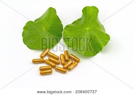 Green Asiatic Pennywort (Centella asiatica ) and yellow pill capsules on white background poster