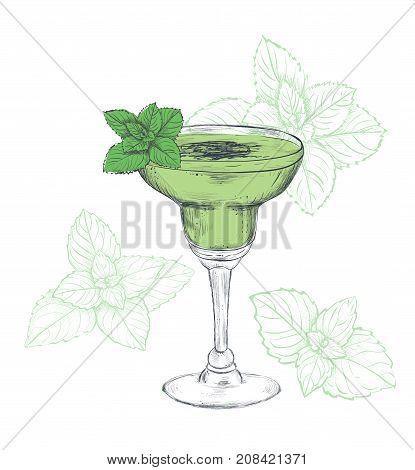 Mint cocktail sketch illustration. Mint drink Exotic cocktail skech