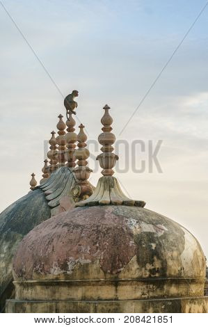monkey sitting on top of a spire of an ancient domed building in nahargarh, jaipur. The discoloration and wear of the dome show the age of this famous fort and landmark