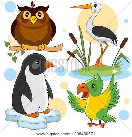 A set of cartoon pictures with animals for children. Illustration with an owl, a penguin, a heron and a parrot.