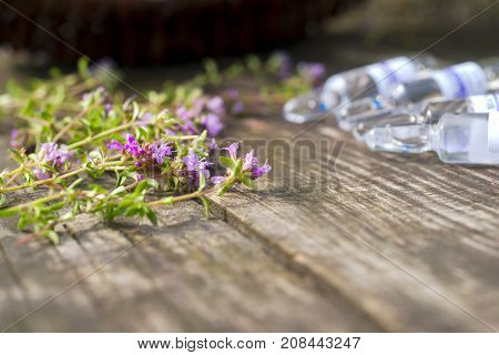 Alternative Medicine.Thyme and medical ampoules on a wooden rustic background. Essential oils and herbal supplements.