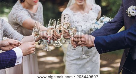 Happy Group Of People Toasting With Champagne. Hands Holding Glasses Of Champagne And Clinking. Brid
